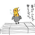 オカメインコ観察絵日記